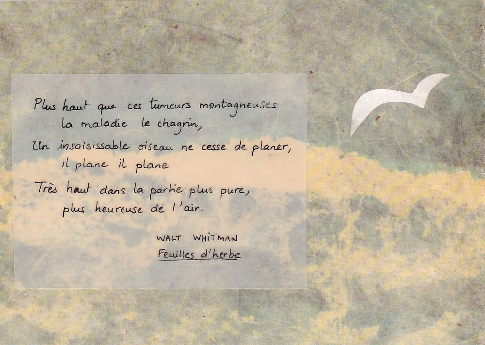 ENVPE ELZBIETA Oiseau 01
