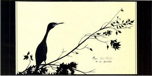 ENVPE Pecheurcormoran