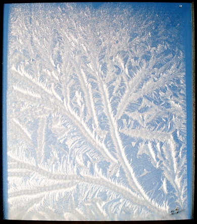 L'art venu du froid - 25 11 10