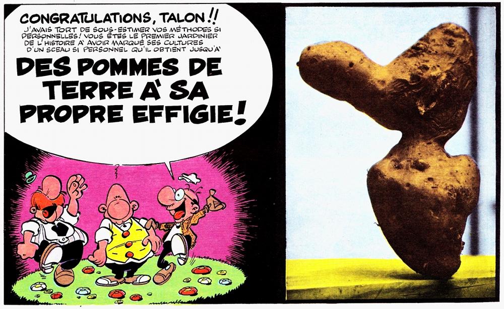 Extrait de L'incorrigible Achille Talon / Greg (Dargaud)