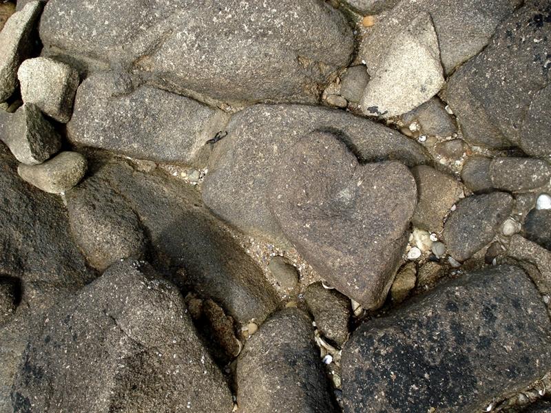 08 07 12 La-Trinité-sur-mer (56) Coeur